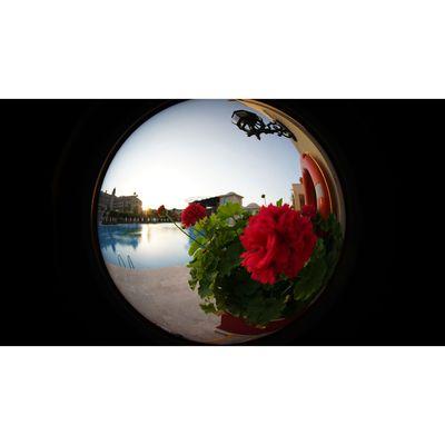 Für weitere Info hier klicken. Artikel: Meike 6,5mm f/2,0 Nikon 1