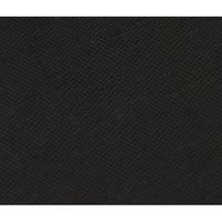 Falcon Eyes Fantasy Cloth FC-16 3x6 m Schwarz