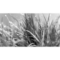 Für weitere Info hier klicken. Artikel: Canon Academy Makrofotografie im Botanischen Garten 06.06.18