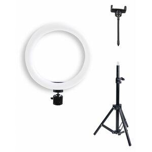 Für weitere Info hier klicken. Artikel: Braun VloggKit 100, (26cm) LED Ringlicht, Kugelkopf, 50cm Stativ