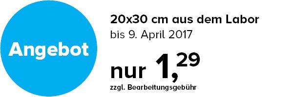 Bilder Service 20x30 cm Aktion