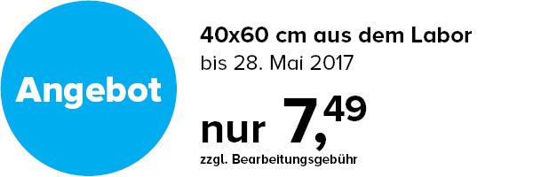 Bilder Service 40x60 cm Aktion