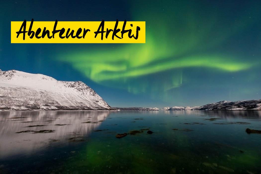 Wildlife- und Landschaftsfotografie - Lana Tannir