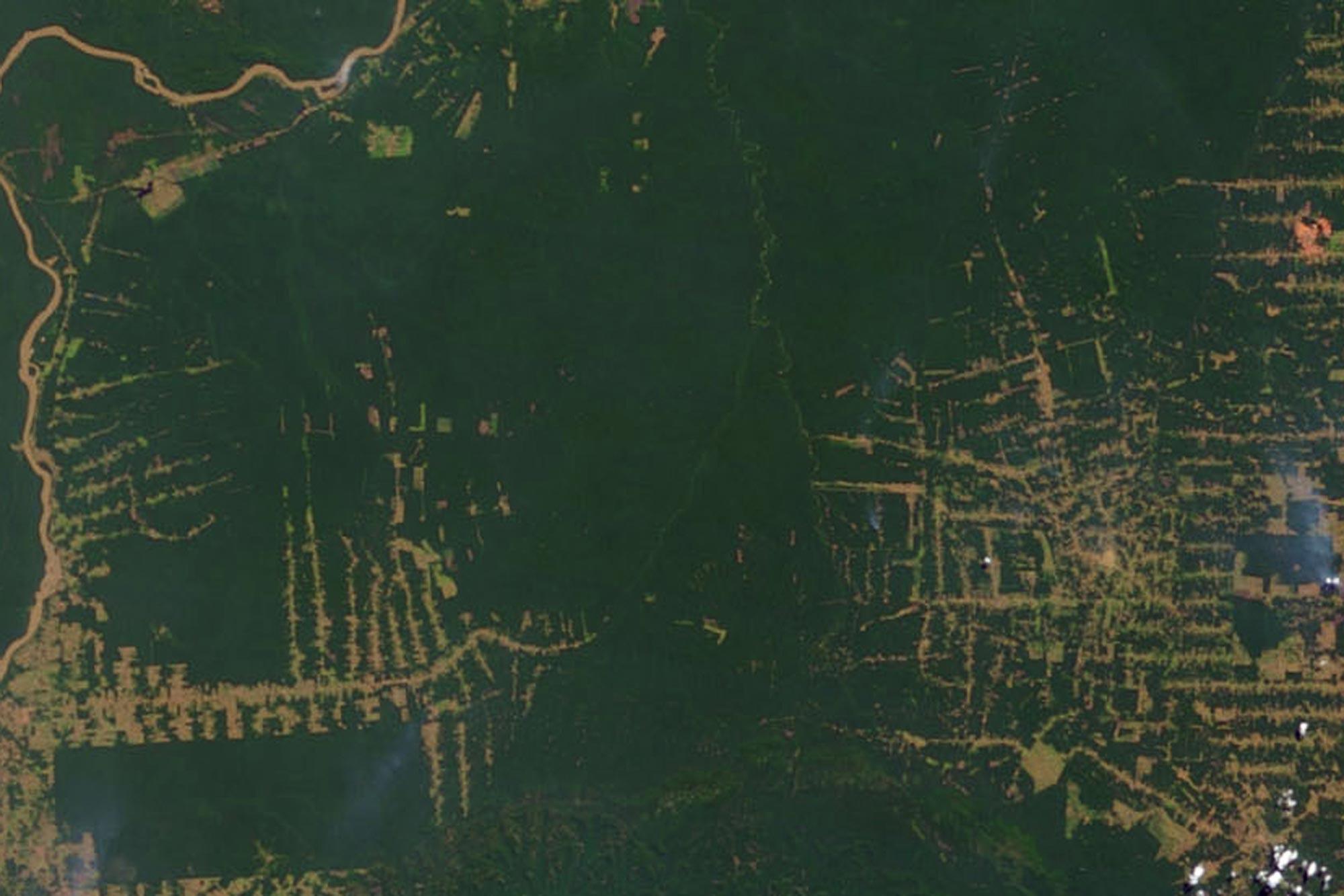 Rondonia Amazonas 2000