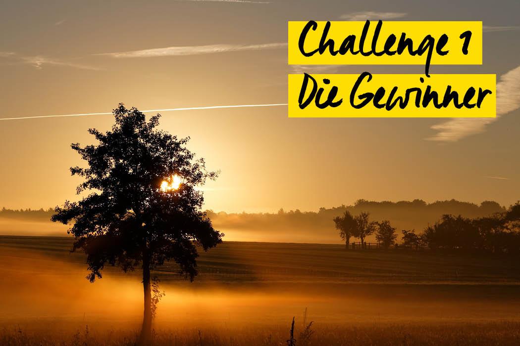Challenge 1 Gewinner