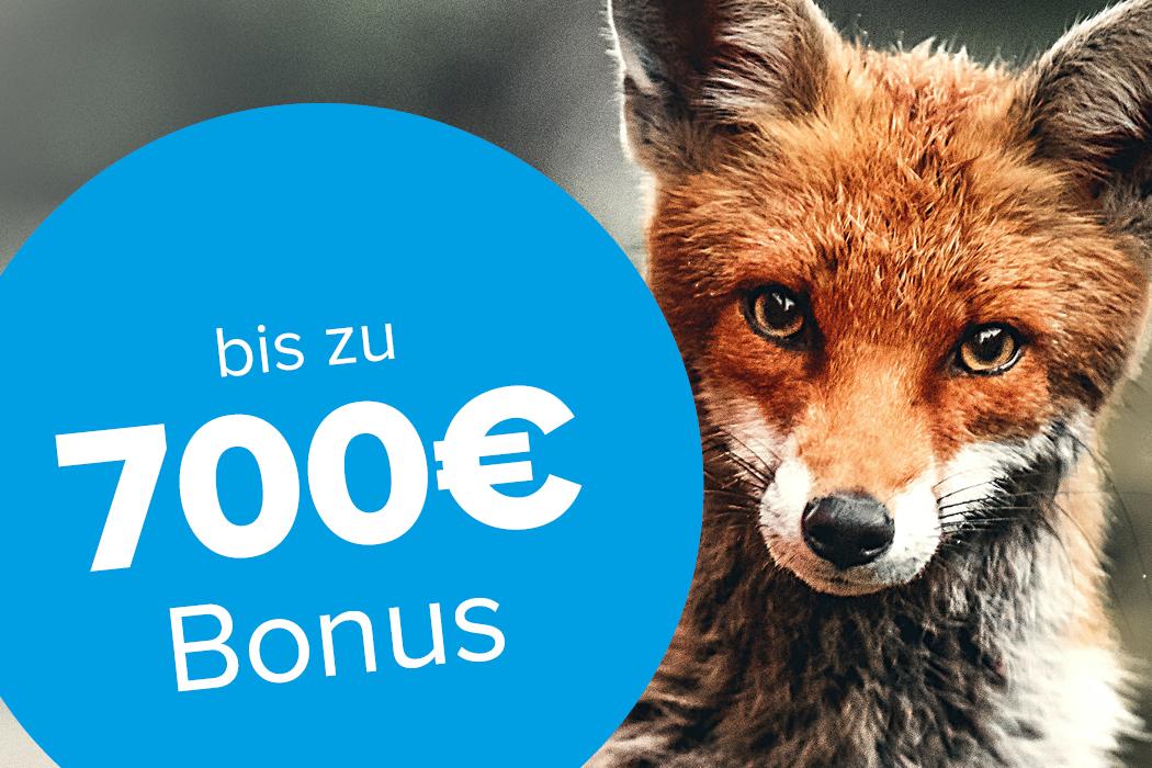 Bis zu 700€ Bonus