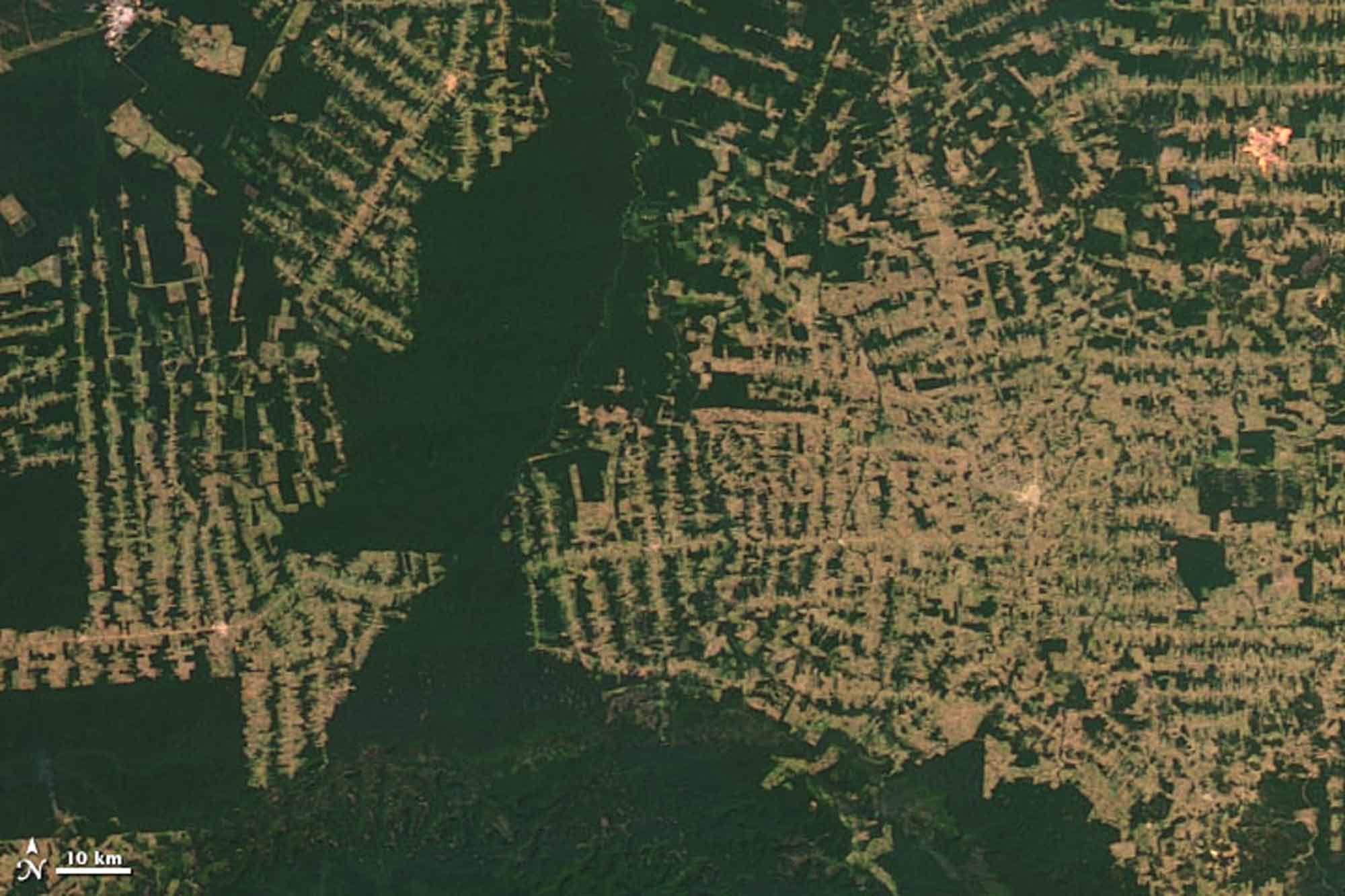 Rondonia Amazonas 2012 / Earth Observatory NASA