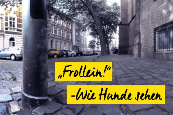 foto-koch-frollein-wie-hunde-sehen-thomas-stelzmann-content-artikel-teaser