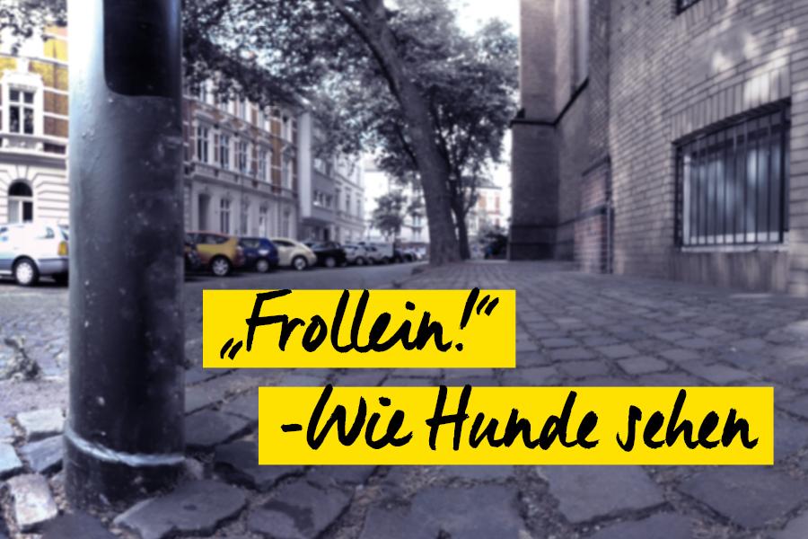 foto-koch-frollein-wie-hunde-sehen-thomas-stelzmann-content-artikel-titelbild