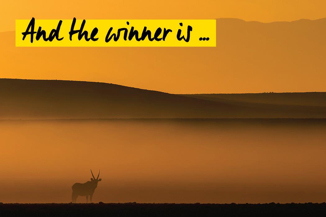 Fotowettbewerb Natur - Wir pru00e4sentieren die Gewinner