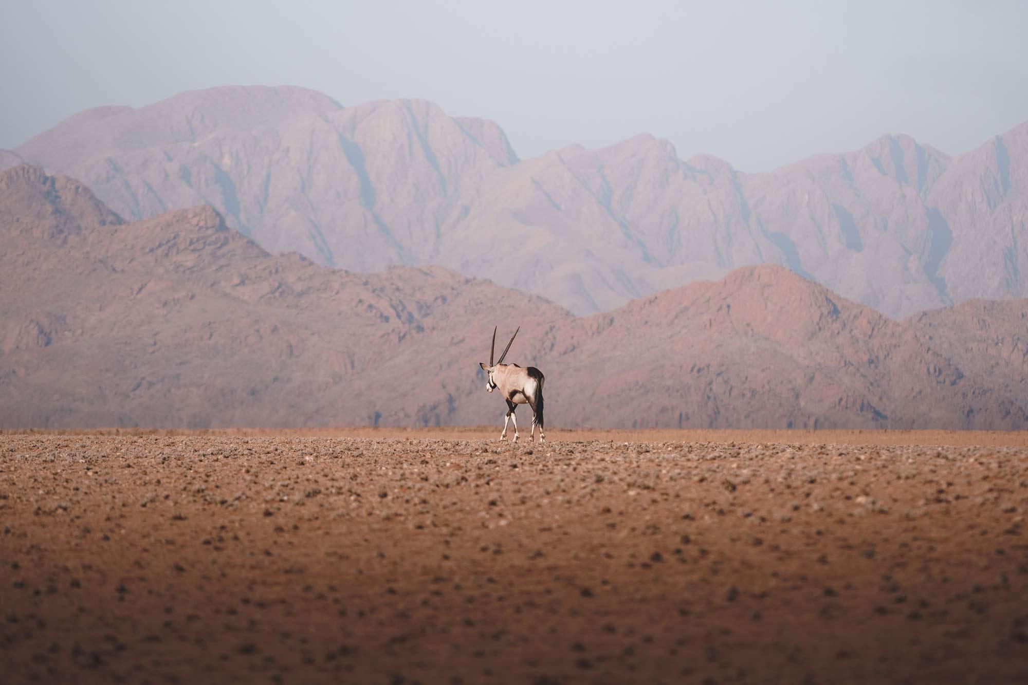 Lea Milde Namibia