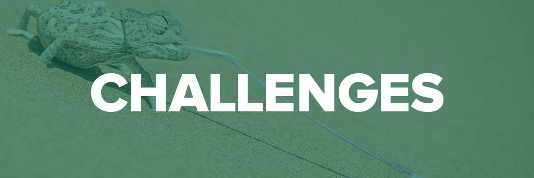 Online Fototage Challenges