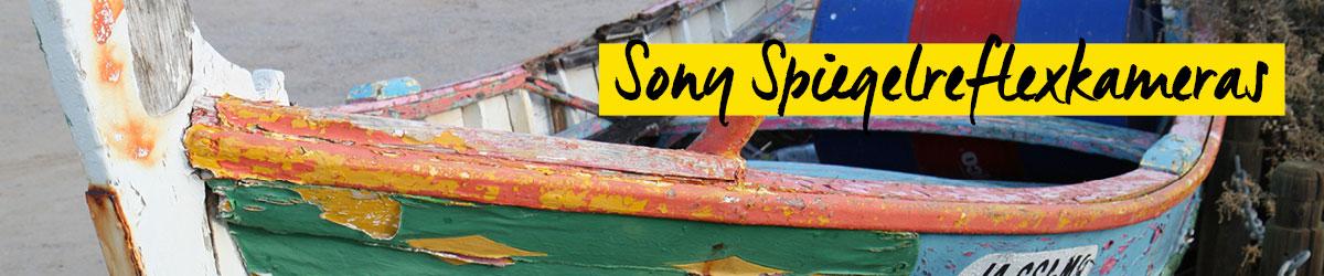 Sony Alpha Spiegelreflexkameras