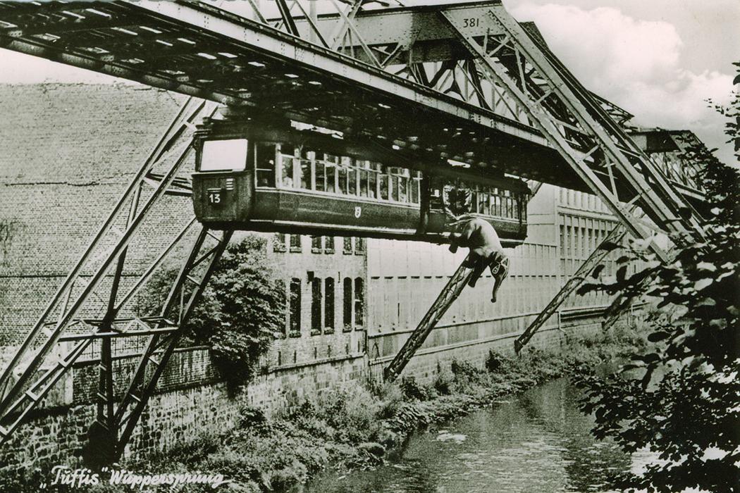 Tuffi Wuppertal